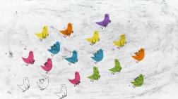 Linnugripp / Bird Flu